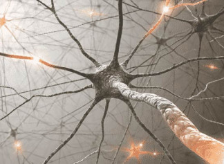 Атрофія зорового нерву